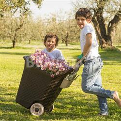 Zahradní vozík KART 76 litrů - barva hnědá